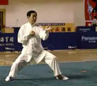 Stage TAIJI de Toussaint avec WANG XIAN Wang_40